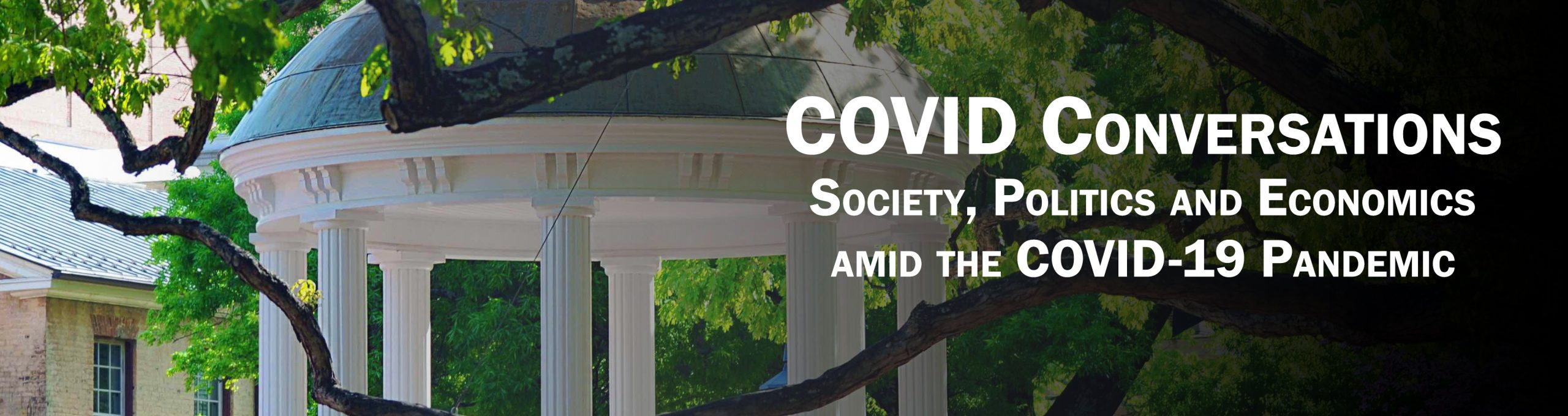 COVID Conversations: Society, Politics and Economics amid the COVID-19 Pandemic